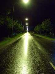 green light (sparkleice) Tags: road trees light green wet night dark streetlights sparkleice theperfectphotographer stealingshadows