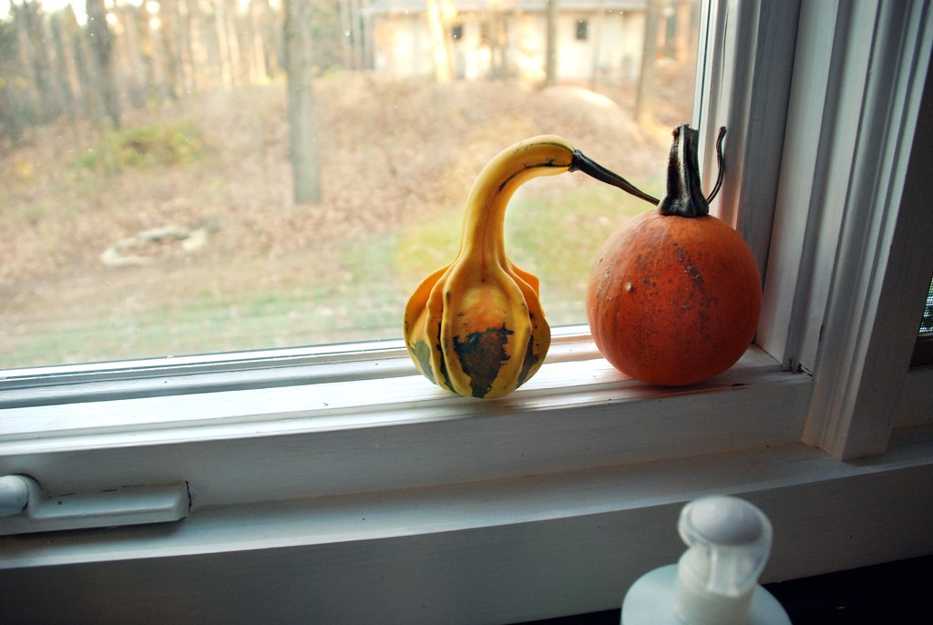 Good God. good gourds