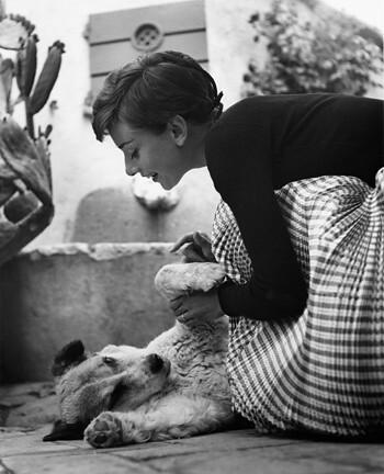 Audrey Hepburn by mralenlin