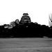 姫路城:白黒で姫路城