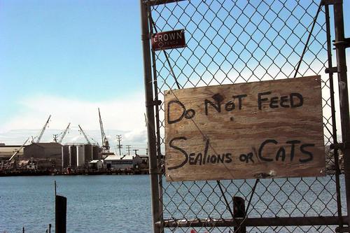 Dock signage