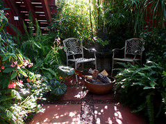 Shade Garden (mondomuse) Tags: venice garden palms bamboo patio shade begonia tropical ferns studiogarden