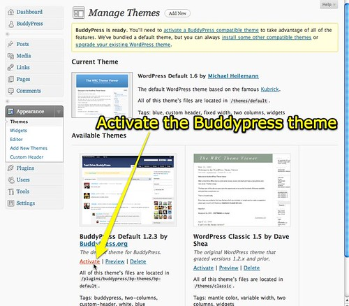 Activate the Buddypress Theme