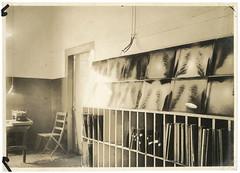 Anglų lietuvių žodynas. Žodis x-ray photograph reiškia rentgeno nuotrauka lietuviškai.