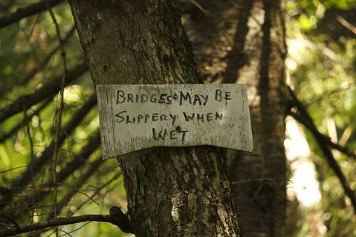 Willoughby Bog Hike (14)