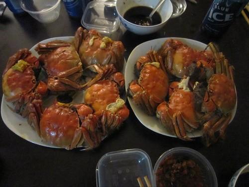 Hairy Crab 2010 V1