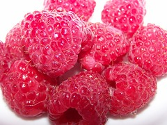raspberries (Little Grey) Tags: food macro fruits fruit catchycolors rouge desserts foodporn raspberry redrule brightcolors crayonbox juicyfruit iatethis foodcoma fruitsandvegetables colorred colorandcolors fruitandveg berrynice eatinganddrinking allyouneedislove framboises afternoonsnacks yummyyummy colormyworld berriesandfruit ilovefood macroandmacros dramaticcolor veganfoods macromacromacro colorsclub fortheloveofquorn flickrfoodphotographers prettyfruit