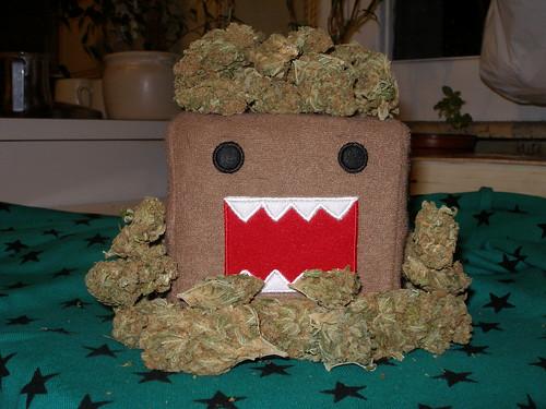 Domo Smoking Weed