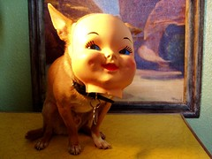 floyd in disguise 3 (EllenJo) Tags: baby pets chihuahua dogs face costume doll mask disguise dollface ellenjoroberts ellenjdroberts ejdroberts ellenjocom
