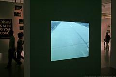 documenta 12 | Lotty Rosenfeld / Una milla de cruces sobre el pavimento | 1979 | Fridericianum 2. floor