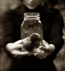 offering.jpg (sgseko) Tags: portrait bw sepia moody fineart toycamera mysterious jar eggs unfocused kerr symbolic personalwork