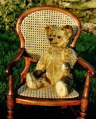 Bear on child's chair