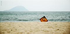 ¿Por qué morir? (GraceOda) Tags: sea praia beach danger mar horizon aviso perigo alert horizonte maradentro boraceia jureia ¿porquémorir