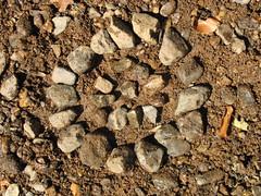 Bowen's rock art