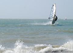 (joanchang) Tags: alex  windsurfer