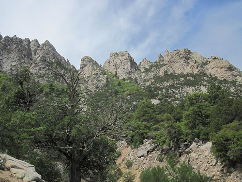The Rugged Organ Mountains