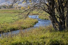 The stream meanders (Rocky Pix) Tags: road autumn mountain fall mike rural colorado pix ditch crane farm longmont rocky mtn hollow vr 70200mm f28g rockypix kiteley