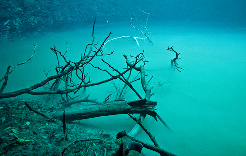 Cenote Angelita 06