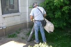 Nettoyage des mégots
