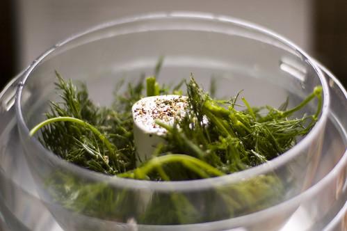 Divided dill pesto among bowls. Using knife, swirl pesto into soup.