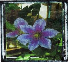 Inkjetflower