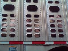 Pig Truck 3 (frogwasteland) Tags: cameraphone truck pig bacon meat transportation frogwasteland pigtruck