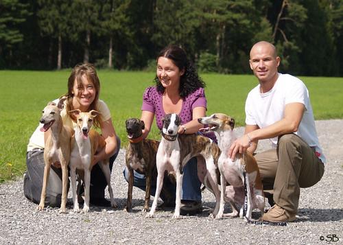 Whippets:  Sabine mit Coco und Nisha, Petra mit Amy und Zora, Matthias mit Mendi