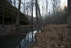 Rim Rock, Shawnee National Forest (DClemm) Tags: illinois shawneenationalforest d80 solophotos harrisburgillinois grouptripod mygearandme