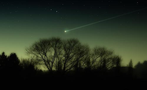 [フリー画像] 自然・風景, 空, 夜空, 樹木, イギリス, イングランド, 流星, ロンドン, 201004020100