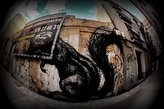 RRRRRROA !!!!!!  in Zaragoza (RominikaH) Tags: street urban art graffiti calle stencil nikon arte photos fisheye zaragoza destroyer aragon urbano graff viejo casco magdalena ardilla destroy peleng callejon abandonado roa ojodepez madalena historico d90 zgz rominikah