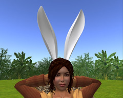 Rabbit Ear (2010-10-26)