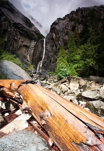 Lower Yosemite Falls Study 6