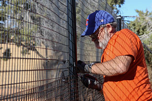 Double fencing being installed at Dogtown