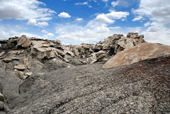 Dry Bones Can Harm No One (taylorkoa22) Tags: old sky newmexico color nature rock stone clouds landscape nikon formation area badlands wilderness nm bisti marcgutierrez d80 nikonstunninggallery