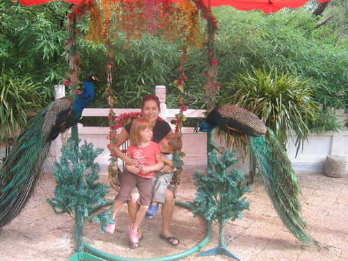 me_kids_peacocks_1