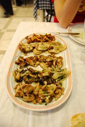 Spain: Five grilled mushroom types