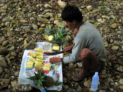 The best pineapple we've ever eaten