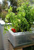 Sub-irrigation Storage Box Planter