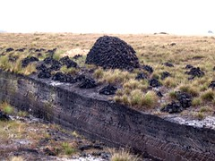 peat drying (revnancy) Tags: ireland peat bog
