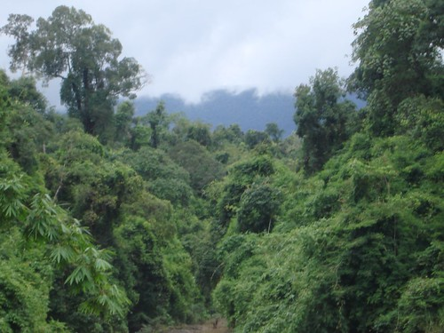 Khao Yai - Parque Nacional de Tailandia