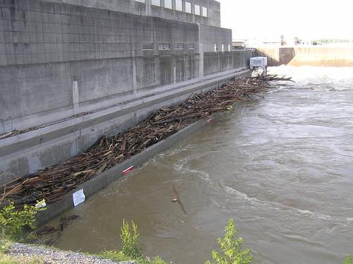 Hard Water Damage