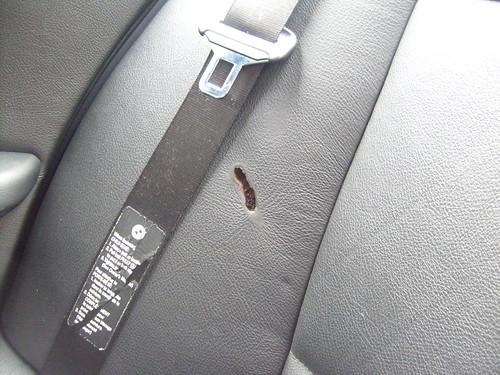 Leather Burn Hole