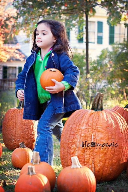 Sweetie Proud Pumpkins