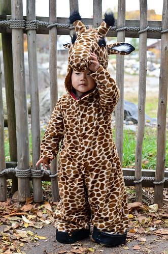 halloween-zoo-portraits-4
