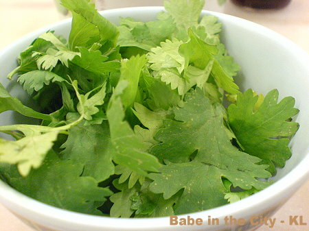 MK - Chinese Parsley
