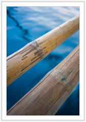 Bamboo on water (Ian Dawes) Tags: philippines puertogalera mindoro scubatrip atlantisdiveresort