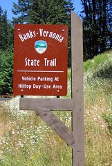 Banks Vernonia