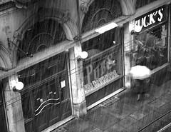 TORINO bianconero (peo pea) Tags: torino neve 5d bucks ombrello naturalmente birreria canoneos5d supershot 10faves abigfave anawesomeshot diamondclassphotographer ofstreet thebestofday gnneniyisi peopea bwlimage