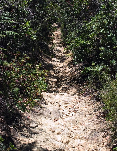 Temelpa Trail