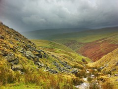 Dowber Gill Wham Photo
